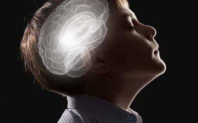 The Developing Mind:  Understanding Your Child's Behavior